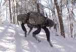 muol-boston-dynamics